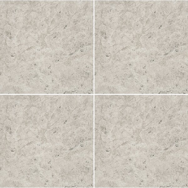 12 x 12 Marble Field Tile in Gray by Parvatile