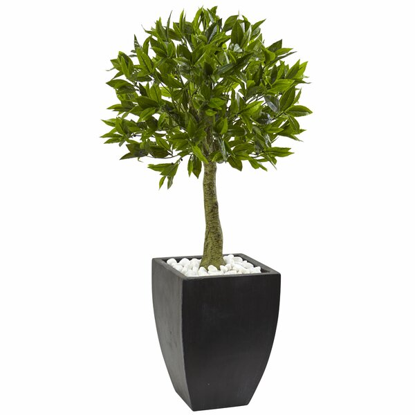 Floor Boxwood Topiary in Planter by Nearly Natural