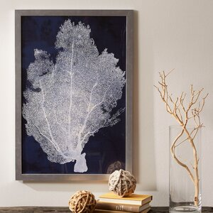 Coral Framed Print II by Birch Lane™