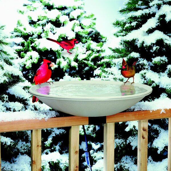 Deck Mount Heated Birdbath by Allied Precision Industries