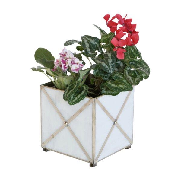 Crosshatch Glass Planter Box by Worlds Away