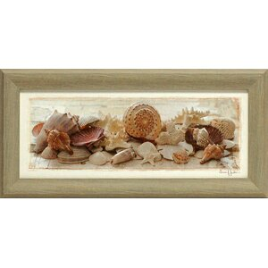 'Treasures of the Sea II Beach' by Susan Jackson Framed Photographic Print by Artistic Reflections
