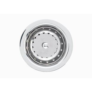 Blanco kitchen sink accessories youll love deluxe kitchen sink strainer by blanco workwithnaturefo
