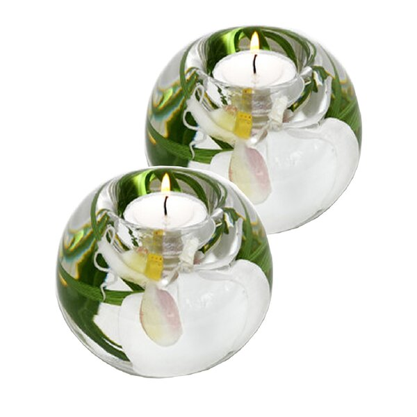 Phalaenopsis Orchid Glass Tealight (Set of 2) by Bloomsbury Market