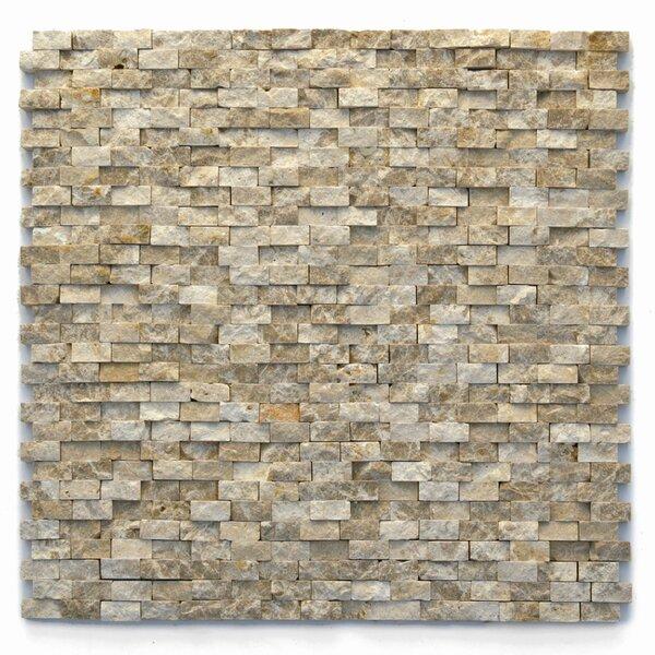 Modern 0.5 x 0.75 Marble Splitface in Dada by Solistone