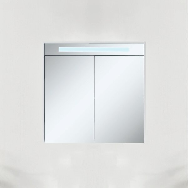 Donze 29.65 x 29.53 Surface Mount Medicine Cabinet with LED Lighting by Latitude Run