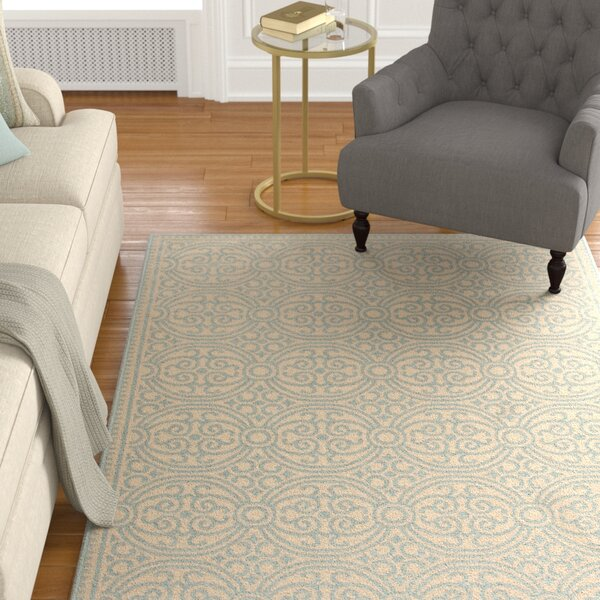 Burnell Aqua/Cream Area Rug by Darby Home Co