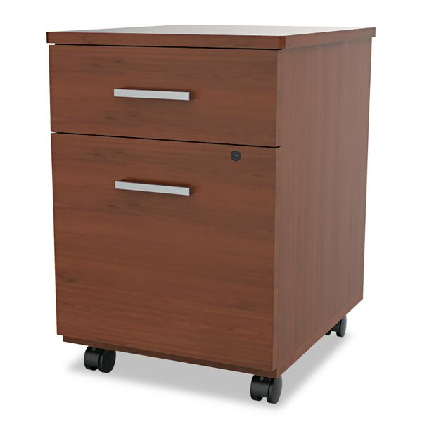 Monterey 2-Drawer Mobile Vertical Filing Cabinet by Ebern Designs