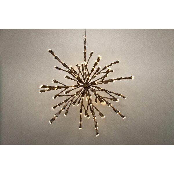 240 LED Light Starbust by Hi-Line Gift Ltd.