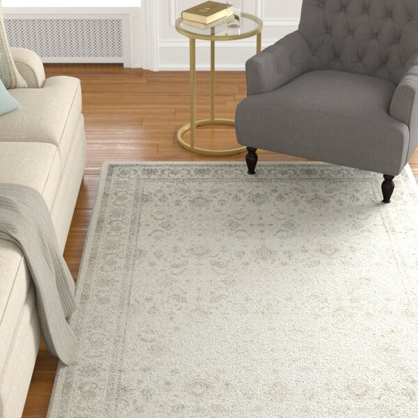 Setser Ivory/Silver Area Rug by Darby Home Co