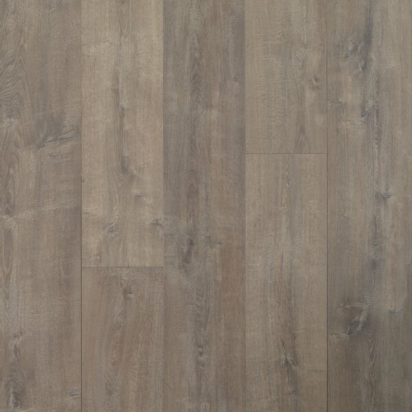 Colossia 9 x 80 x 10mm Oak Laminate Flooring in Providence by Quick-Step
