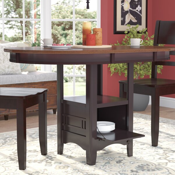 Sinkler Counter Height Drop Leaf Dining Table by Darby Home Co
