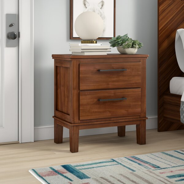 Hylan 2 Drawer Nightstand by Brayden Studio