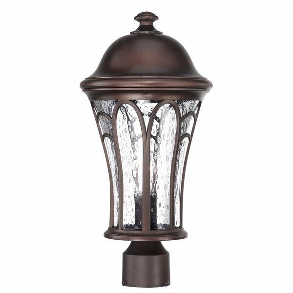 Berube Outdoor 1-Light Lantern Head by Fleur De Lis Living