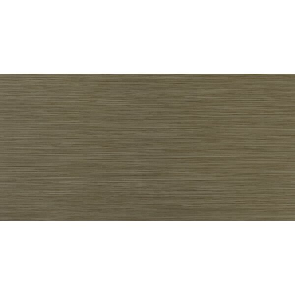 Focus Khaki 12 x 24 Porcelain Wood Look/Field Tile in Beige by MSI