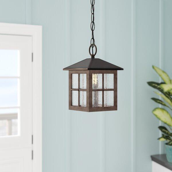 Ellingsworth 1-Light Hanging Foyer Pendant by Bay Isle Home