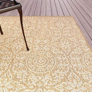 Barker Brown Indoor/Outdoor Area Rug