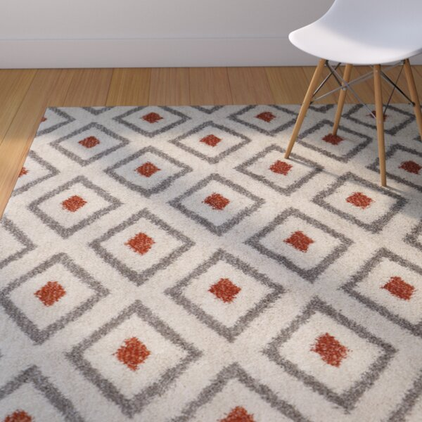 Beekman Place Tribal Diamond Woven Coral Area Rug by Brayden Studio