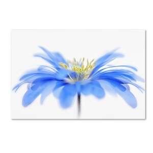 Floral Fountain' Graphic Art on Wrapped Canvas by Trademark Fine Art