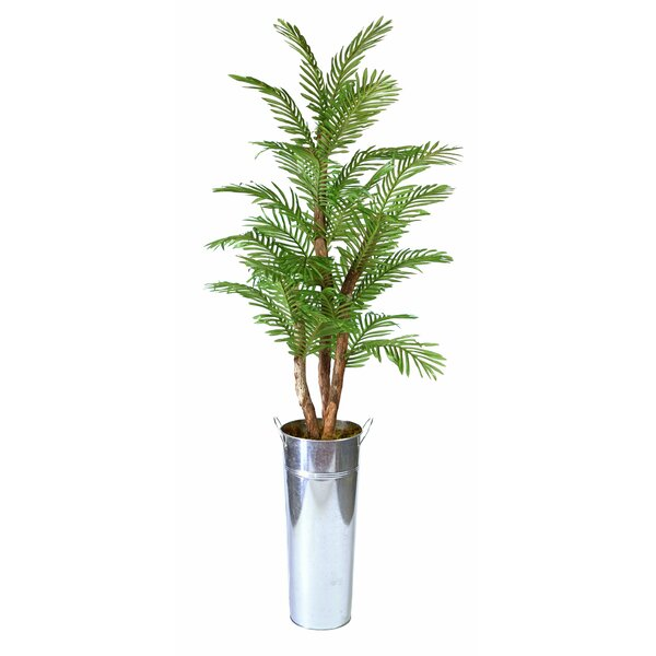 Areca Floor Palm Tree in Planter by Breakwater Bay