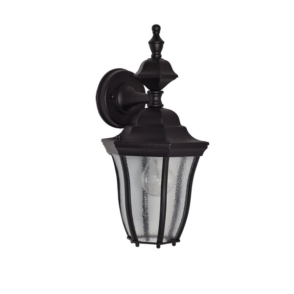 Salesville 1-Light Outdoor Wall Lantern by Darby Home Co