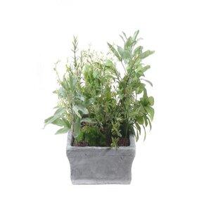 artificial herbs | wayfair