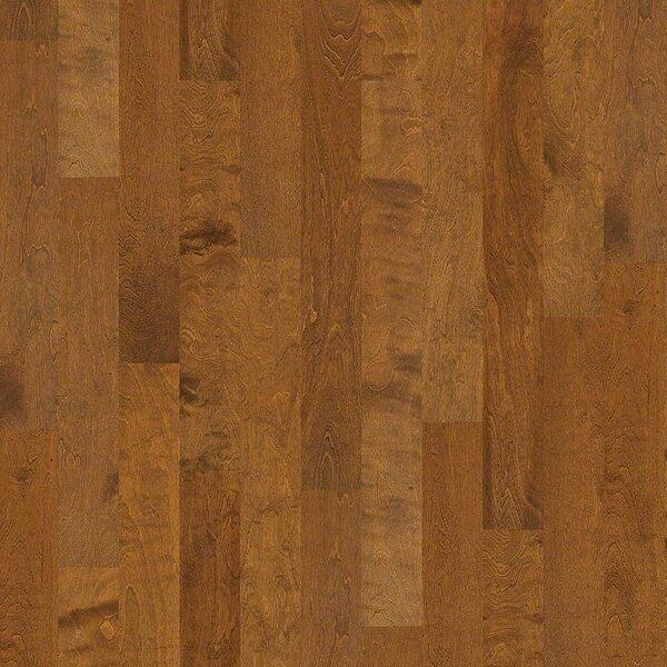 Pittman 5 Engineered Birch Hardwood Flooring in Enterprise by Shaw Floors