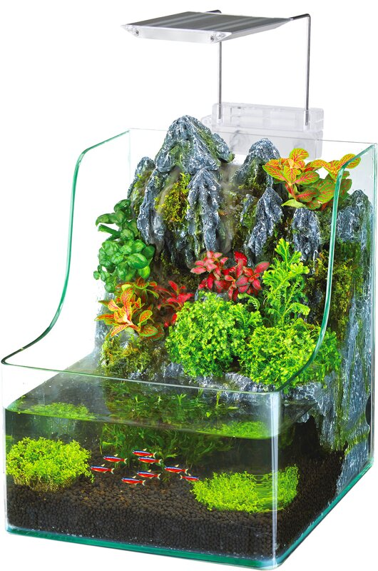 1+Gallon+AquaTerrium%25u2122+Aquarium+Tank