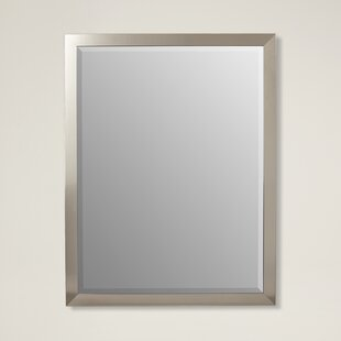 Latitude Run Stainless Framed Wall Mirror