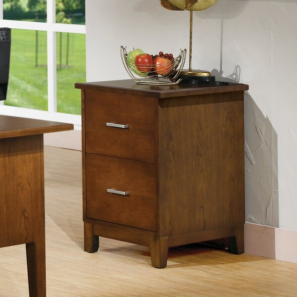 Eaton 2-Drawer File by Darby Home Co