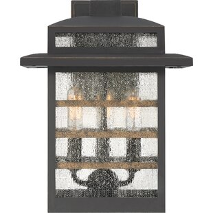 Best Choices Vieira 3-Light Outdoor Lantern By Gracie Oaks