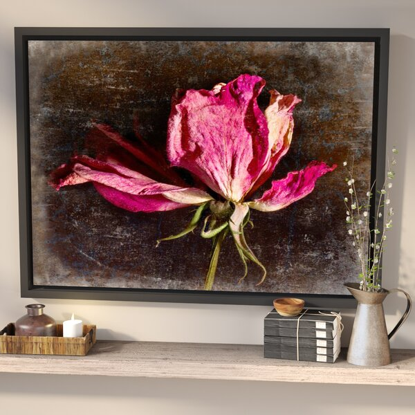 Red Rose Framed Photographic Print By Laurel Foundry Modern Farmhouse.