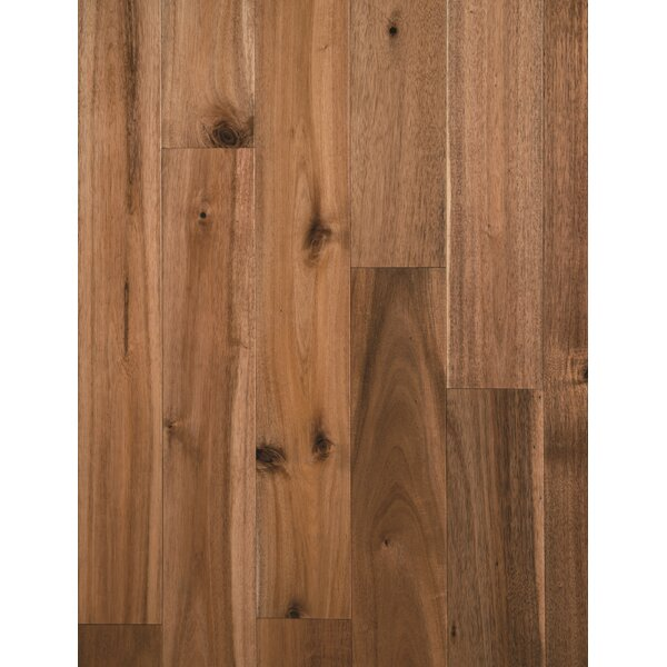 Loganne Random Width Solid Acacia Hardwood Flooring in Smooth Chai Beige by Welles Hardwood