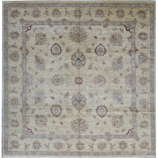 Hand-Knotted Wool Beige/Brown Rug