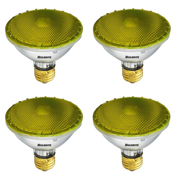 75W E26 Dimmable Halogen Light Bulb (Set of 4) by Bulbrite Industries