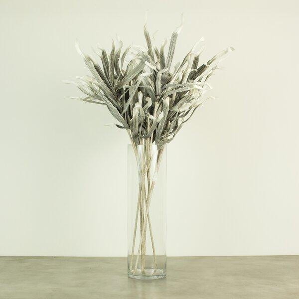 Botanica Stem (Set of 6) by August Grove