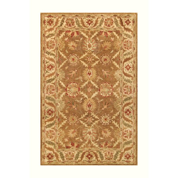 Golden Gold/Beige Area Rug by Noble House
