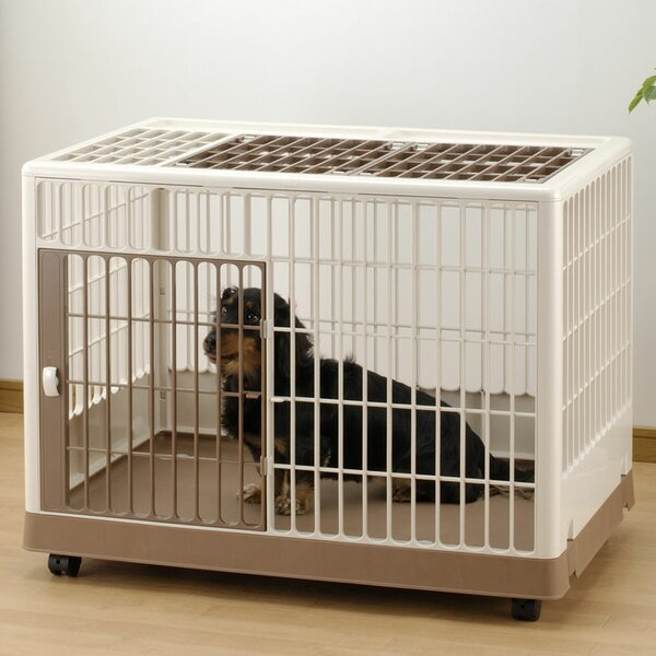 Richell Training Kennel Pet Crate by Richell