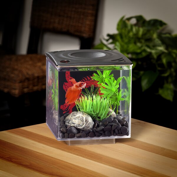 0.75 Gallon Betta Cube Aquarium Tank by Elive