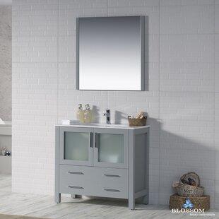 Best Price Mance 36 Single Bathroom Vanity Set with Mirror ByOrren Ellis
