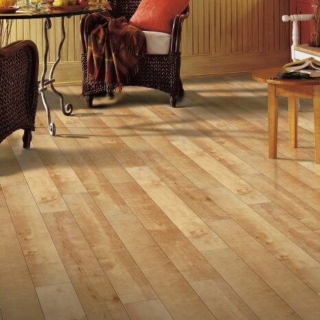 Exotics 16 x 48 x 8mm Maple Laminate Flooring in Tiger by Armstrong Flooring
