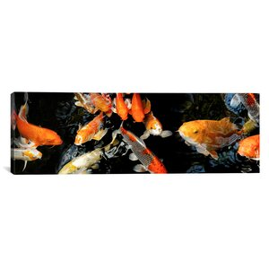 'Koi Carp Swimming Underwater' Photographic Print on Canvas by East Urban Home