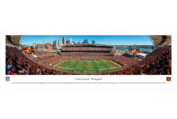 NFL Cincinnati Bengals - 50 Yard Line by Christopher Gjevre Photographic Print by Blakeway Worldwide Panoramas, Inc