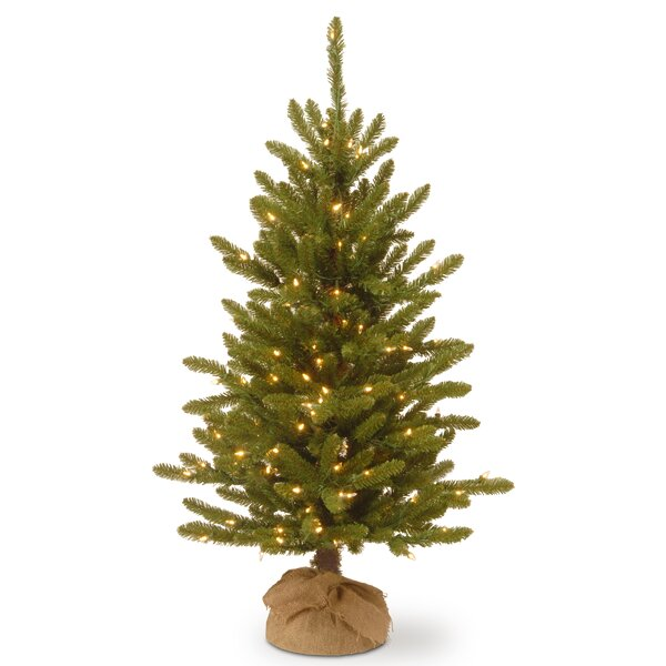 48 Green Artificial Christmas Tree with 150 Clear Lights with Stand by The Holiday Aisle