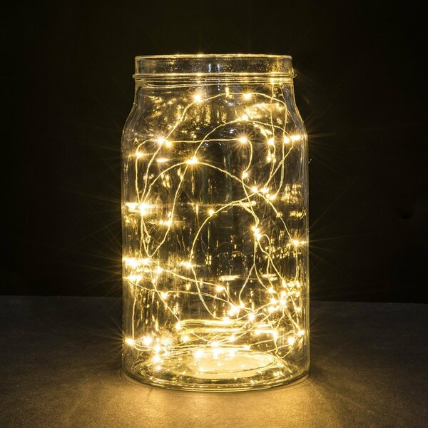 Timer Copper Battery Operated 20 LED String Lights by The Holiday Aisle