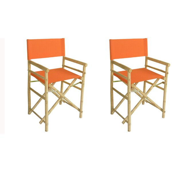 Olivas Folding Director Chair (Set of 2) by Darby Home Co Darby Home Co