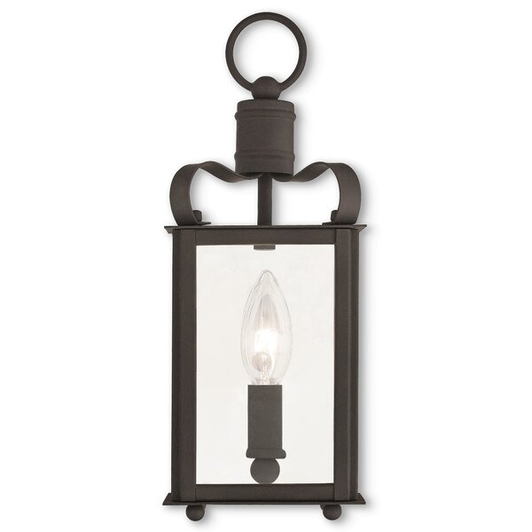 Robertson 1-Light Outdoor Hanging Lantern by World Menagerie