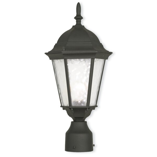 Busse 1-Light Lantern Head by Darby Home Co