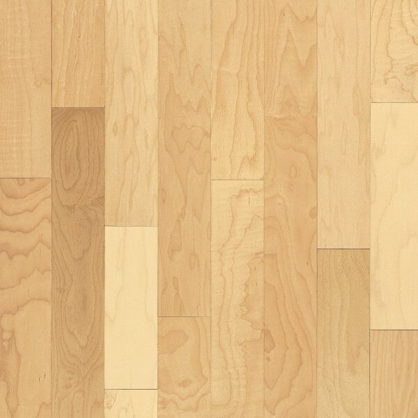 Kennedale Prestige Plank 3-1/4 Solid Maple Hardwood Flooring in Semi Gloss Natural by Bruce Flooring
