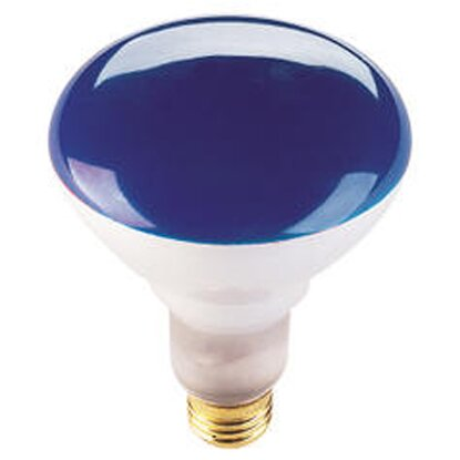 75W Blue 120-Volt Halogen Light Bulb (Set of 8) by Bulbrite Industries
